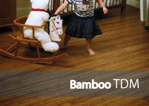 fondo categoría Bamoo TDM