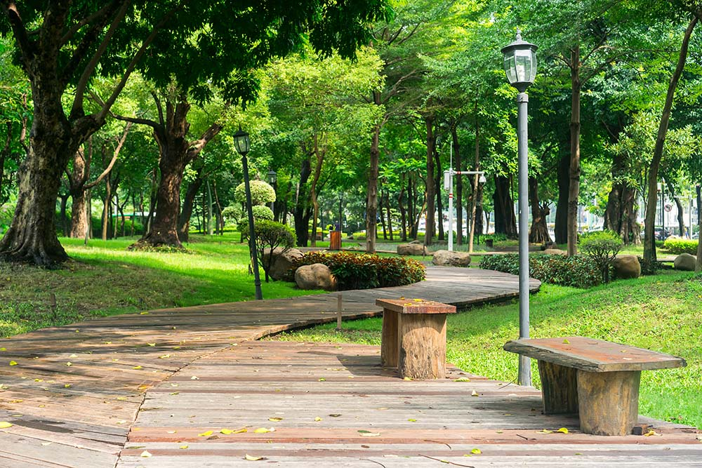 Creando caminos de madera en el jard n tarimas del mundo for Tarimas de madera para jardin