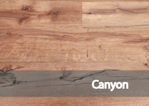 fondo-categoria-canyon