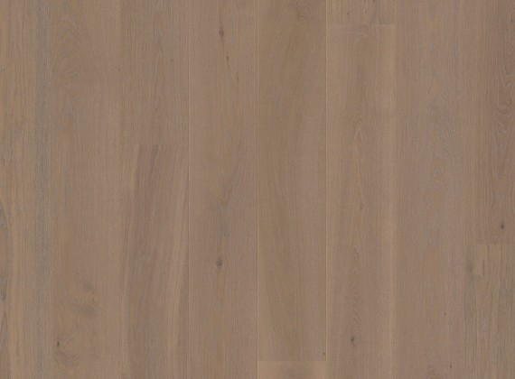 OAK MOONDUST Floor Art - Cenital